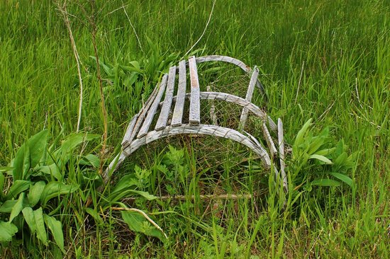 North Rustico Beach: Old wooden lobster trap on shore