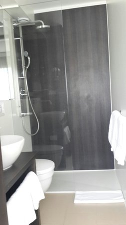 Crowne Plaza Zurich Hotel: They got the slope of the shower all wrong