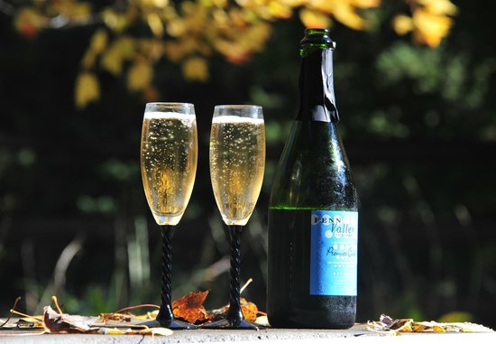 Fenn Valley Vineyards : sparkling wine...out on the terrace-garden