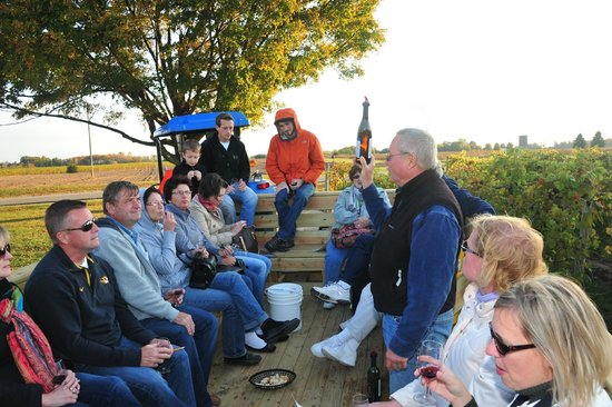 Fenn Valley Vineyards : owner doug during a vineyard tour in the 'wine-wagon'