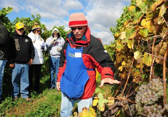 Fenn Valley Vineyards : doug, on tour, explaining the growth of grapes