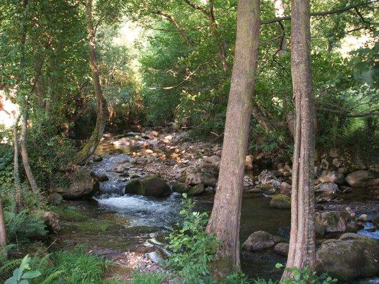 Alesga Hotel Rural: El río que pasa por detrás de la casona