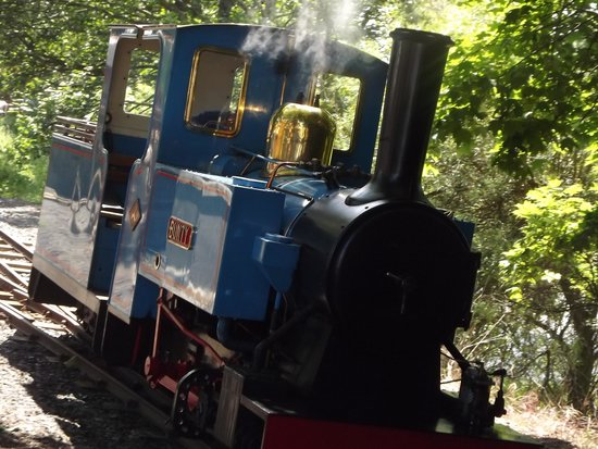 Cornhill on Tweed, UK: Train