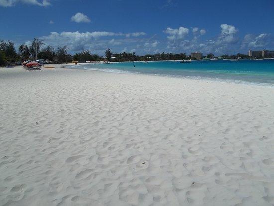 Carlisle Bay: White sand