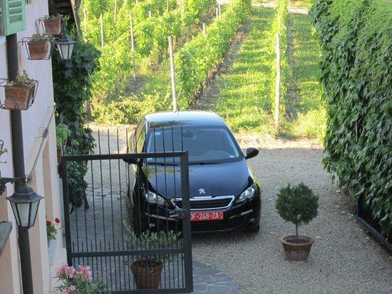 Casa di Maio: Even our car had a shady spot in the vines