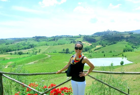 Walkabout Florence Tours: Chianti!!! The views while we ate lunch. One can see the towers of San Gimignano from here.