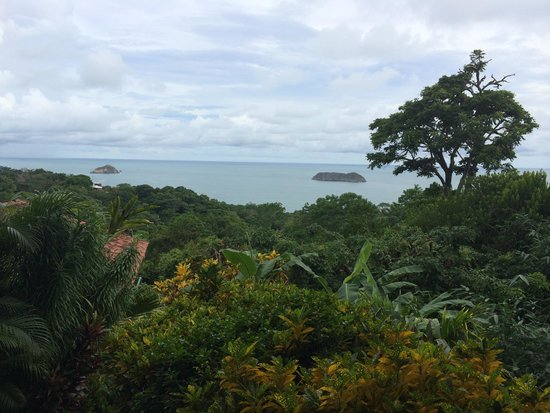 Greentique Costa Rica Tours: View from the Superior Room