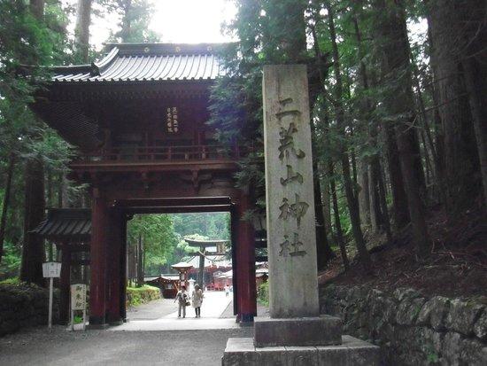 Nikko Futarasan Jinja Shrine: 壮大な神木に見ごたえ