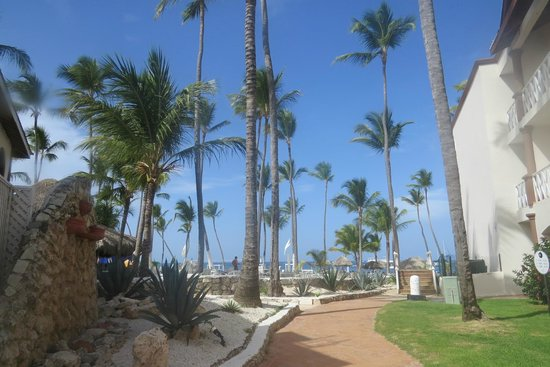 Be Live Collection Punta Cana : Resort