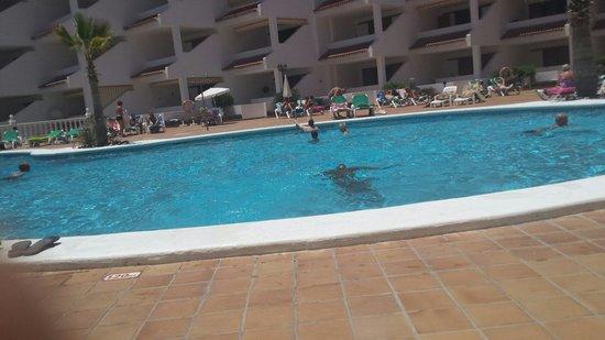 Paloma Beach Apartments: Pool
