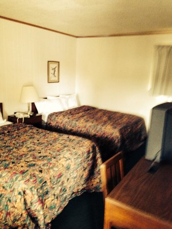 Waterfront Inn - Mackinaw City: The room stinks