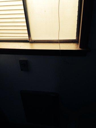 Waterfront Inn - Mackinaw City: Bugs anyone