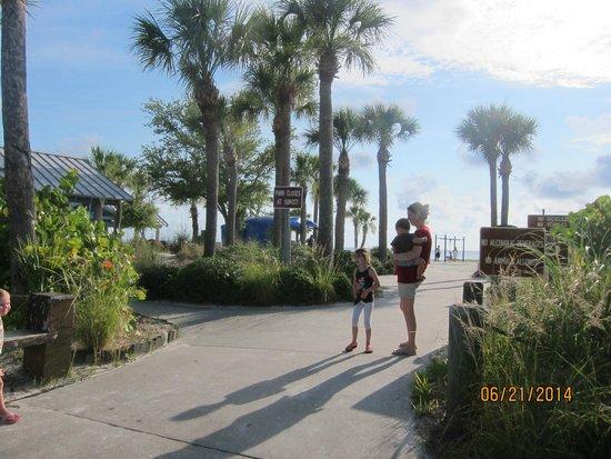 Robert K Rees Memorial Park: walkway