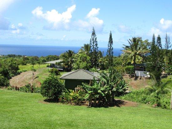 Maui Ocean Breezes: Beautiful View