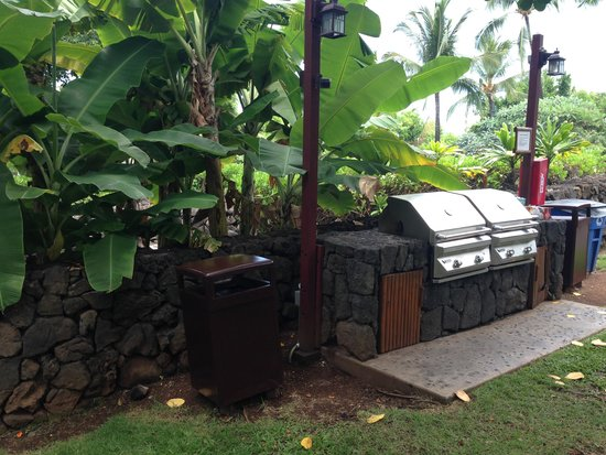 Wyndham Kona Hawaiian Resort : Great Grills Throughout Resort
