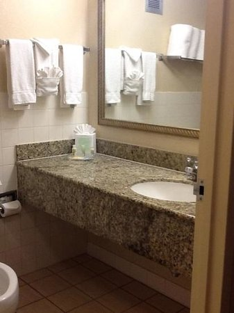 Holiday Inn Country Club Plaza: Bathroom