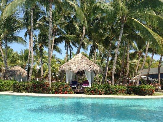 Paradisus Varadero Resort & Spa: Pileta de servicio comun