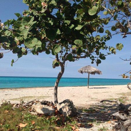 Paradisus Varadero Resort & Spa: Sin playa para bañarse en el sector real