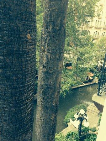 Omni La Mansion del Rio: View from Room #333