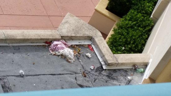 Hilton Daytona Beach / Ocean Walk Village : View of trash from our 5th floor room...old towel and hundreds of cigarettes along with other tr