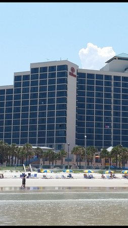 Hilton Daytona Beach / Ocean Walk Village: View of hotel.. I took this while standing in the ocean..