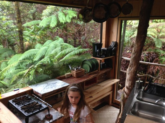 Treehouse Skye: Kitchen with a view