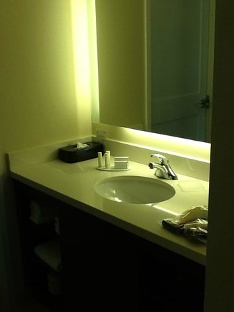 Residence Inn Ottawa Airport: functional bathroom area