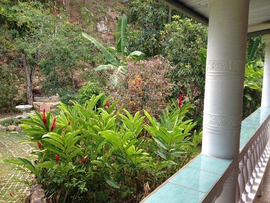 Cafe Mariposa : Beautiful gardens