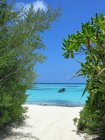 Olhuveli Beach & Spa Resort : View from the Island