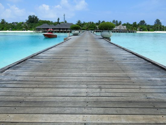 Olhuveli Beach & Spa Maldives: Welcome to Olhuveli