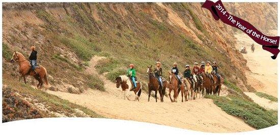 Sea Horse Ranch: Seahorse Ranch beach ride