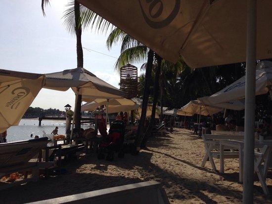 Coastes: Left the Beach, right the cafe