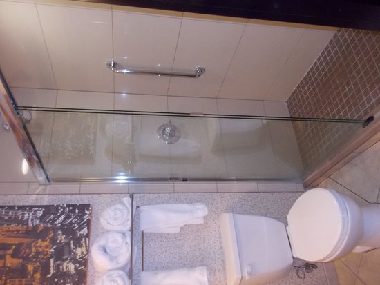 DoubleTree by Hilton Hotel Chattanooga Downtown: glass & tile shower
