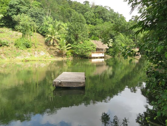 Hotel Finca Tatin : river, swimming dock
