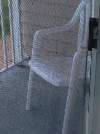 Holiday Inn Express St. Ignace-Lake Front : ripped screen door, infested with mosquitoes