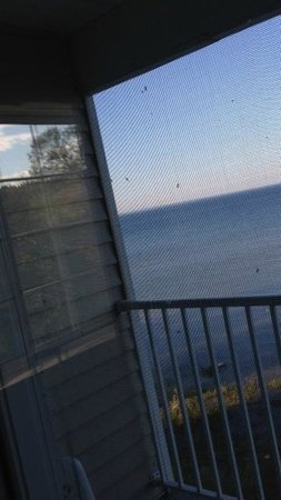 Holiday Inn Express St. Ignace-Lake Front : infested with mosquitoes