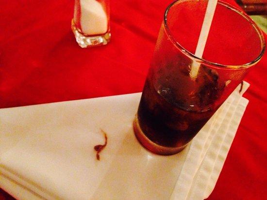 Sunset Marina Resort & Yacht Club: Basura en las bebidas del sunset lagoon