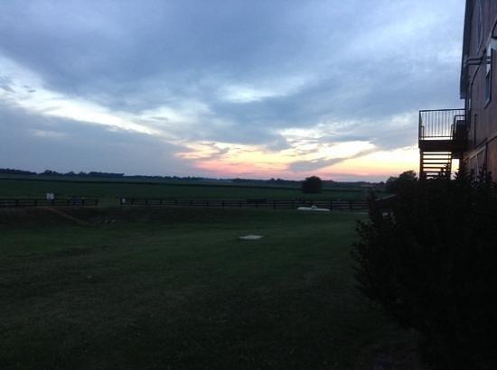 """Chaney's Dairy Barn: Wander the Farm, enjoy the """"fresh air"""" & scenery !!"""