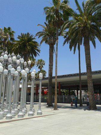 Los Angeles County Museum of Art: Urban Light in front of LACMA
