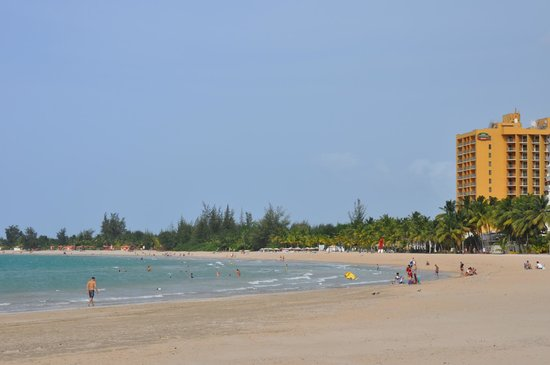 The Ritz-Carlton, San Juan : Beach in front of the Ritz is very clean.  We did not venture outside the area they service