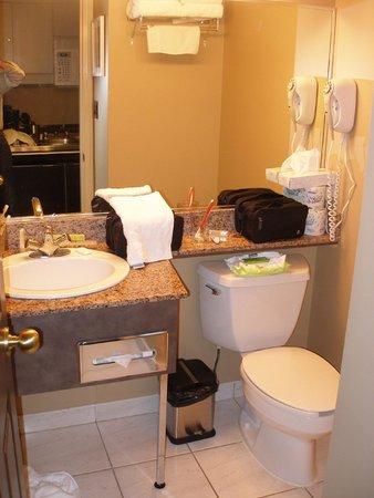 VI at Rosedale on Robson : Full bathroom