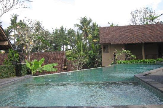 Jati 3 Bungalows : Pool