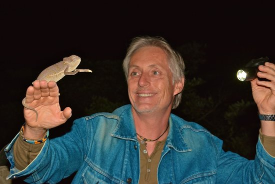 Nkorho Bush Lodge: Chameleon