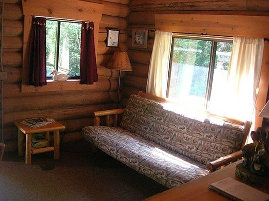 Swan Lake Cabins: Bear's Den Cabin - Living Area/Futon