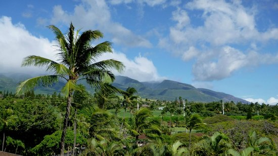 Royal Lahaina Resort : mountain view from lanai