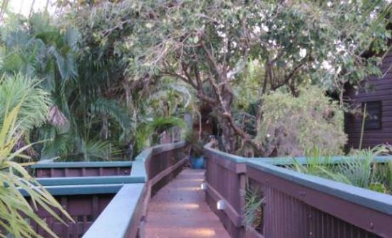 Crab Claw Island Resort: Elevated walkways