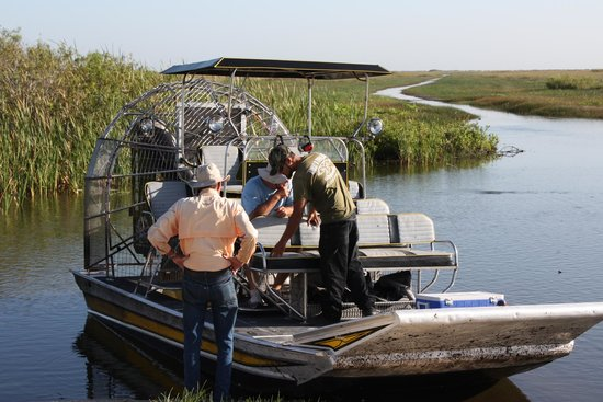 Airboat In Everglades : The Boat
