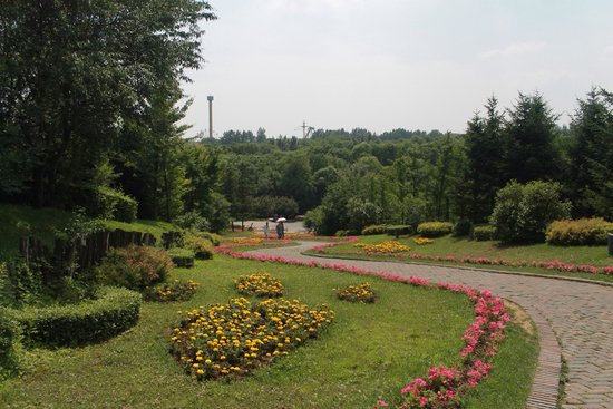 Shenyang Botanical Garden: Plant life well maintained