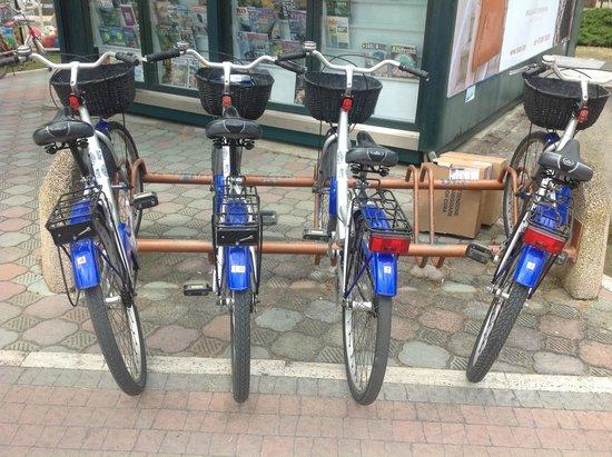 Hotel Belvedere: biciclette dell'hotel