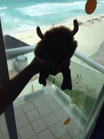 Oleo Cancun Playa: View from our room #wherethebuffaloroam